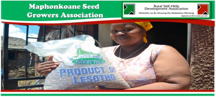 maphonkoane seed growers