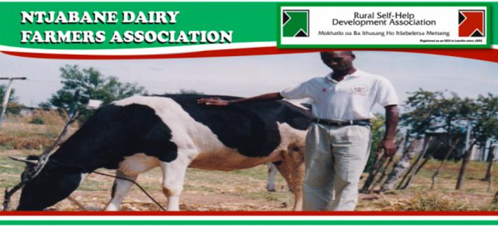 ntjabane diary famers association